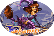 Игровой автомат Wild Witches – в клубе Вулкан 24 играйте онлайн